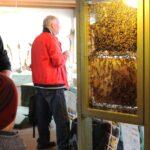 En forårsdag i Rebild - Bier ved Østhimmerlands Biavlerforening