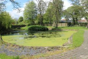 På hjørnet af Storkedamsvej ligger en bypark i mini-format