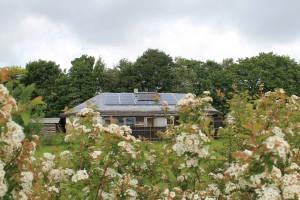 Solceller er der mange af i Himmerlandsbyen
