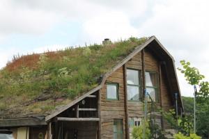 Husene i Himmerlandsbyen adskiller sig fra de gængse parcelhuse
