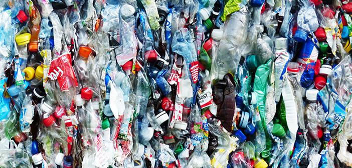 Top 10: Sådan lever danskerne miljøvenligt