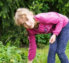 Mindre madspild, grøn strøm, væk med plastikflaskerne og årlig børne-træplantning