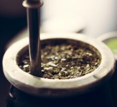 Yerba mate – Alt du skal vide om mate te